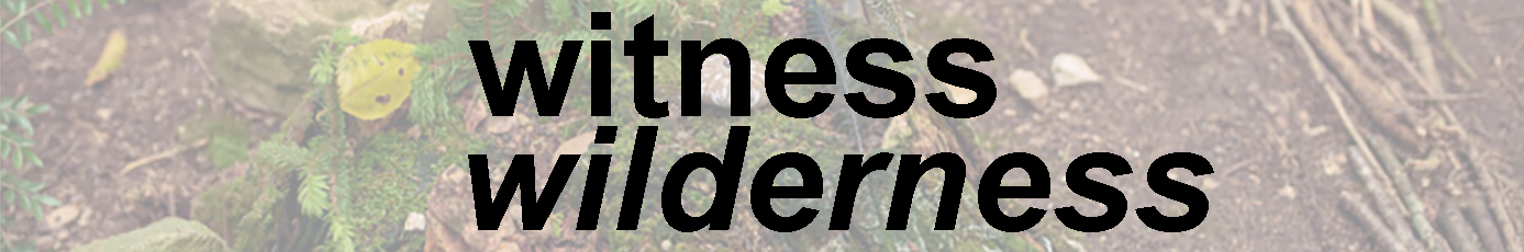 newer witness wilderness banner website_new